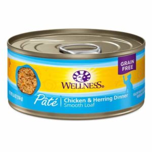 ok feed cat food