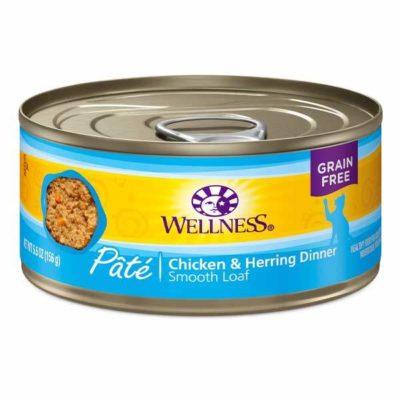ok feed cat food